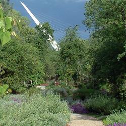 mediterranean-gardens