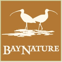 BayNature