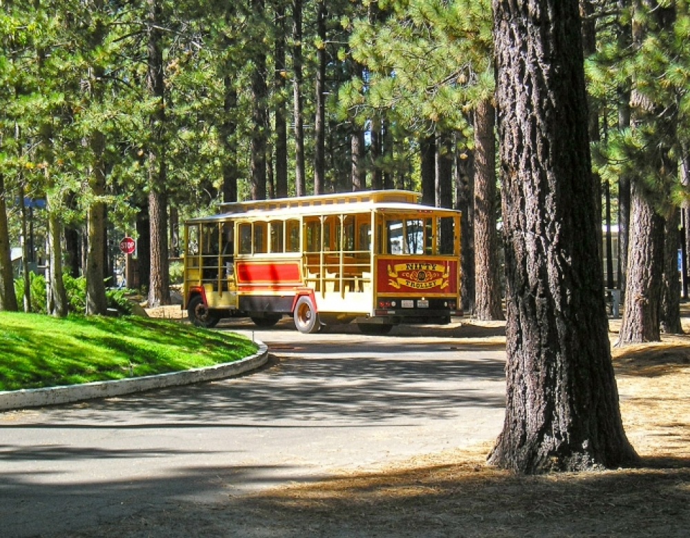 Tahoe Valley Campground - Camp California